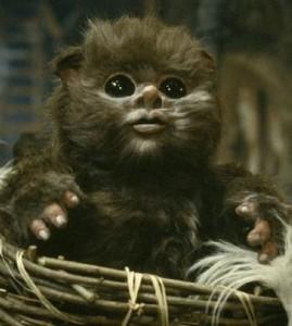 baby-ewok